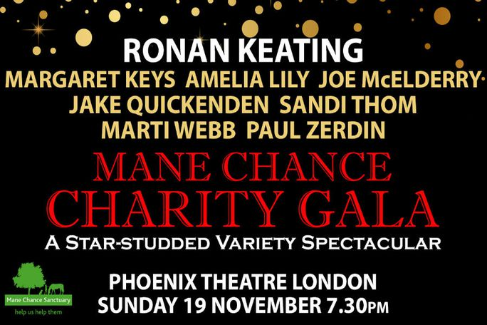 Mane Chance Charity Gala Tickets