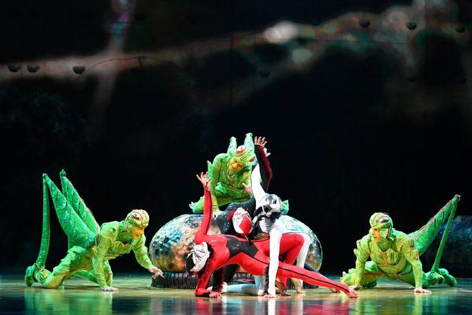 OVO - Cirque du Soleil Tickets